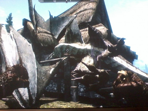 funny skyrim dragon glitch