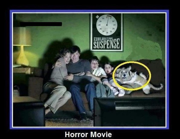 Too scary... O_O =D =P XD