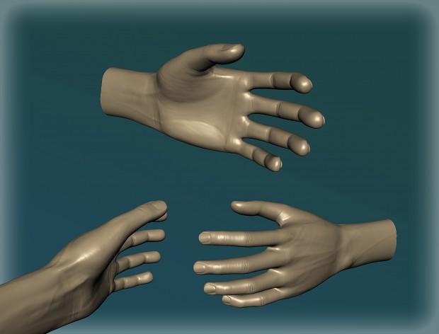 Hand sculp WIP