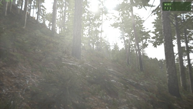 Arma II Day In The Woods