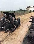 Wehrmacht & Waffen SS