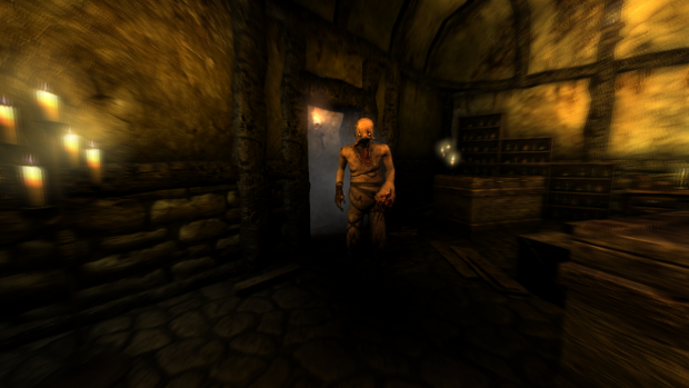 "Amnesia The Dark Descent CS ""The Scares"""