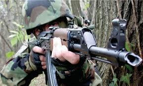 Srpska vojska 1