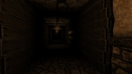 Silent Hallways development