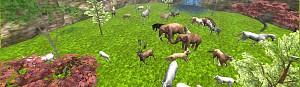 Animal Farm Pasture