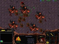Starcraft:The Black Revenge