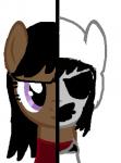 Kate Pony