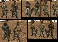 SYRIAN ARMED FORCES