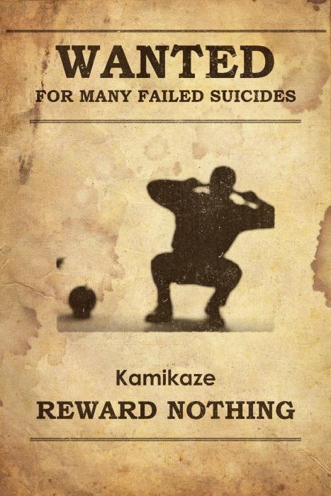 Kamekaze wanted