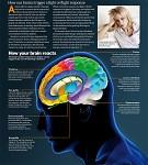 Neuroscience - anxiety
