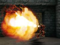 New Phoenix's Flames