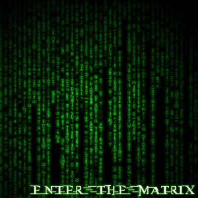 Logo(Beta) image - Enter-The-Matrix mod for Max Payne 2 - Mod DB