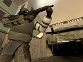 Half Life 2: Extinction