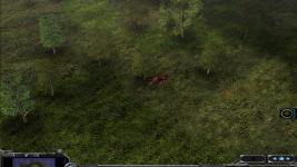 Deer ingame