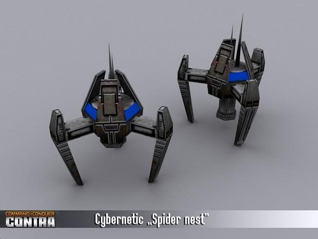 USA Spider Nest