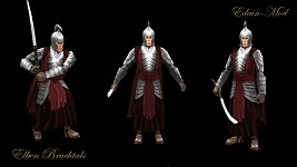 Rivendell Soldiers of the Third Age
