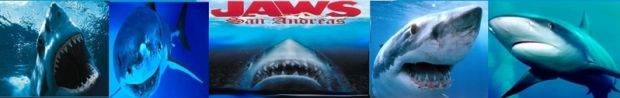 JAWS: San Andreas Official Banner