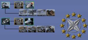 ESDF Combat Doctrines