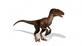 Raptor Render
