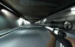 The Mortewood Plaza - Hunting Rifle