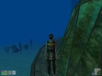 Underwater City + Gingerbread Village