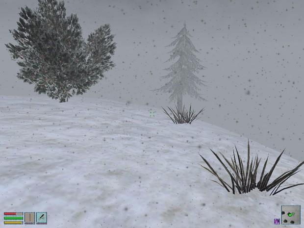 Californian Frost Plains