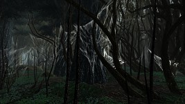webs in Mirkwood