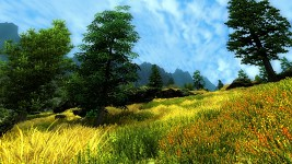 Southern Ithilien