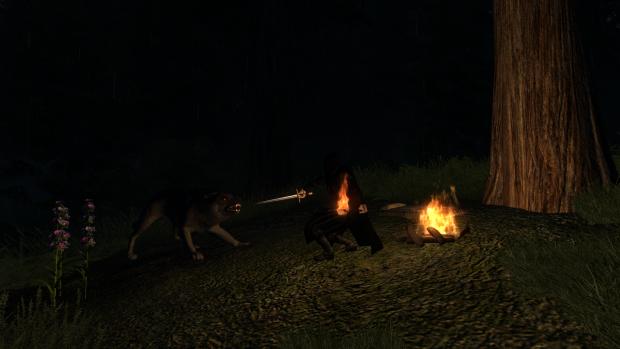 Wolf vs Ranger