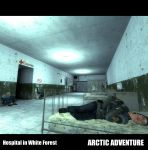 White Forest hospital final