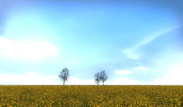 Radiator 1-3, Much Madness - Buttercup fields