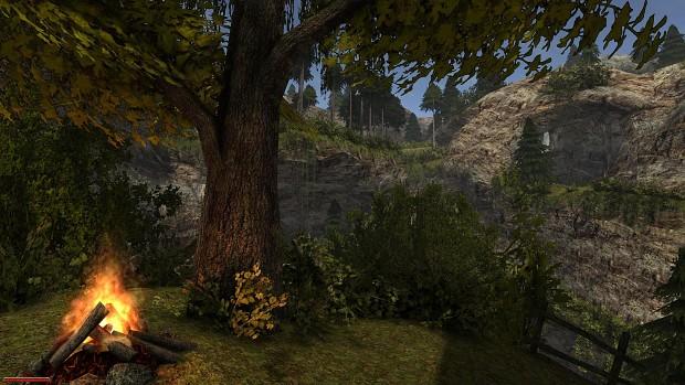 Vaduz forest