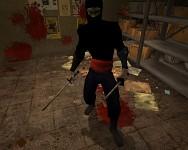 KueJin – Ninja – Dual Wielding Ninjato