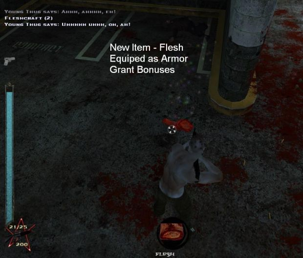 New Item - Flesh