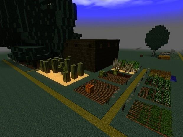 Plant growth 3