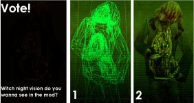 Vote For You Favorite Night Vision!