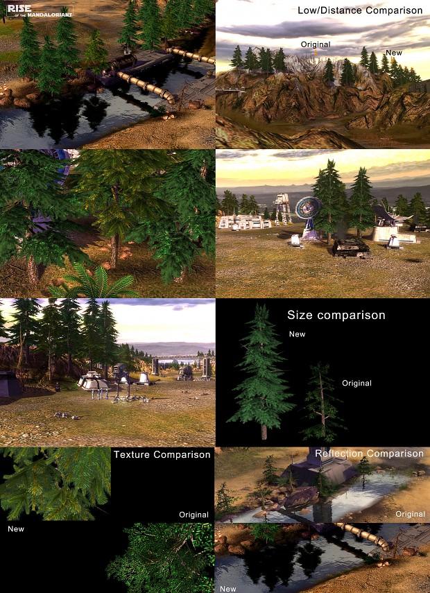 Flora Improvement Project - Evergreens