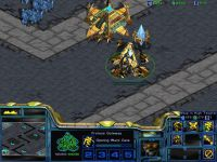 Starcraft: Malediction