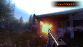 Half-Life 2 MMod : Year worth of media