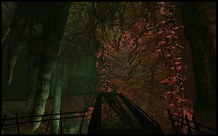 Mission Improbable 3 - Cave with plants