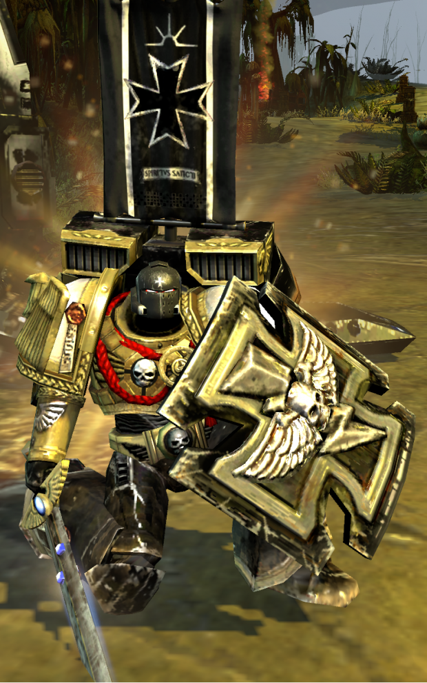 Black Templars Veteran