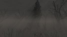 Hunting Platform