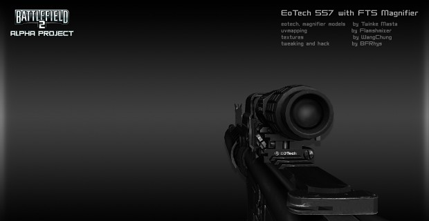 EoTech 557 with FTS Magnifier