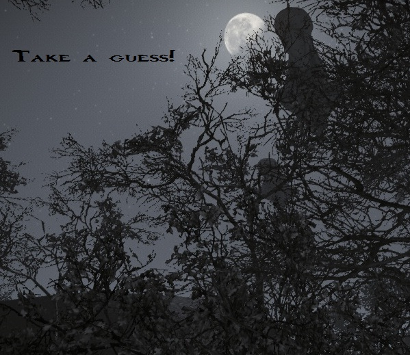 Mystery Photo...