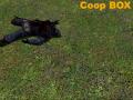 Coop Box