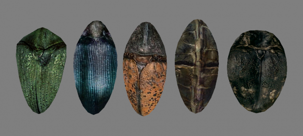Ashlander Shields [New Models]