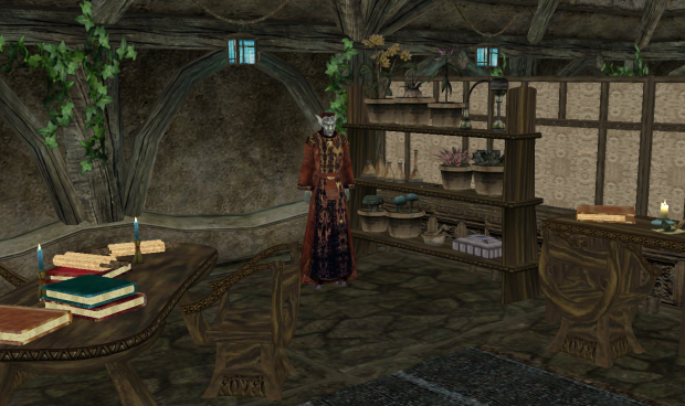 Balmora Guild of Mages