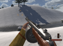 PPsh in game