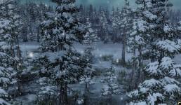 Winter is near...