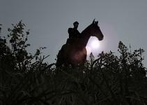Cavalry :)